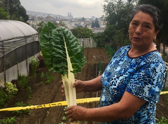 Gloria Rosero, pionera Huertos Quito