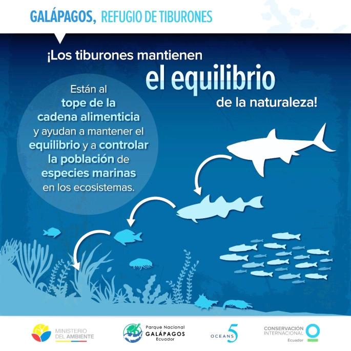 Gráfico tiburones