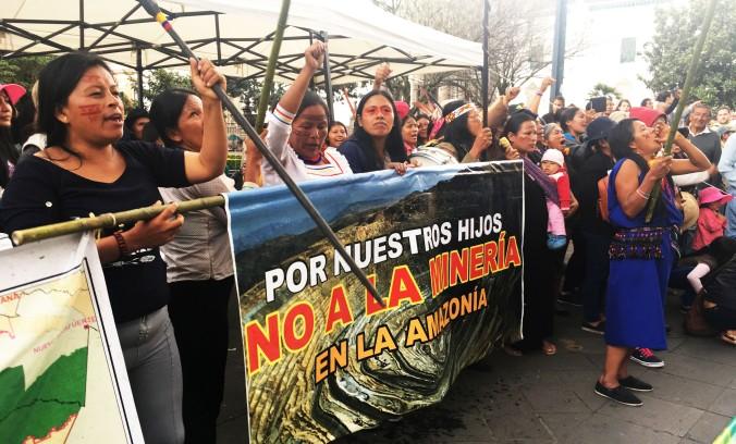 Mujeres amazónicas Vale