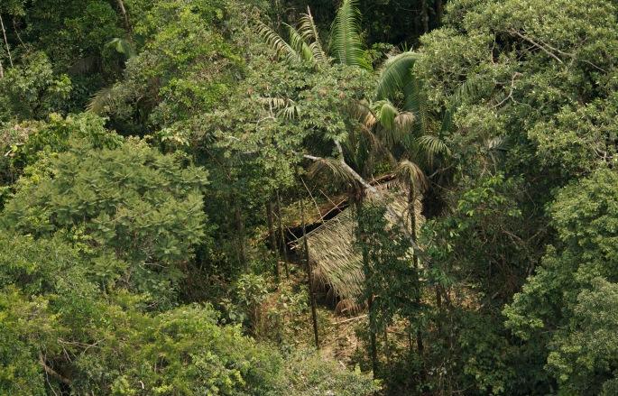 Casa taromenane