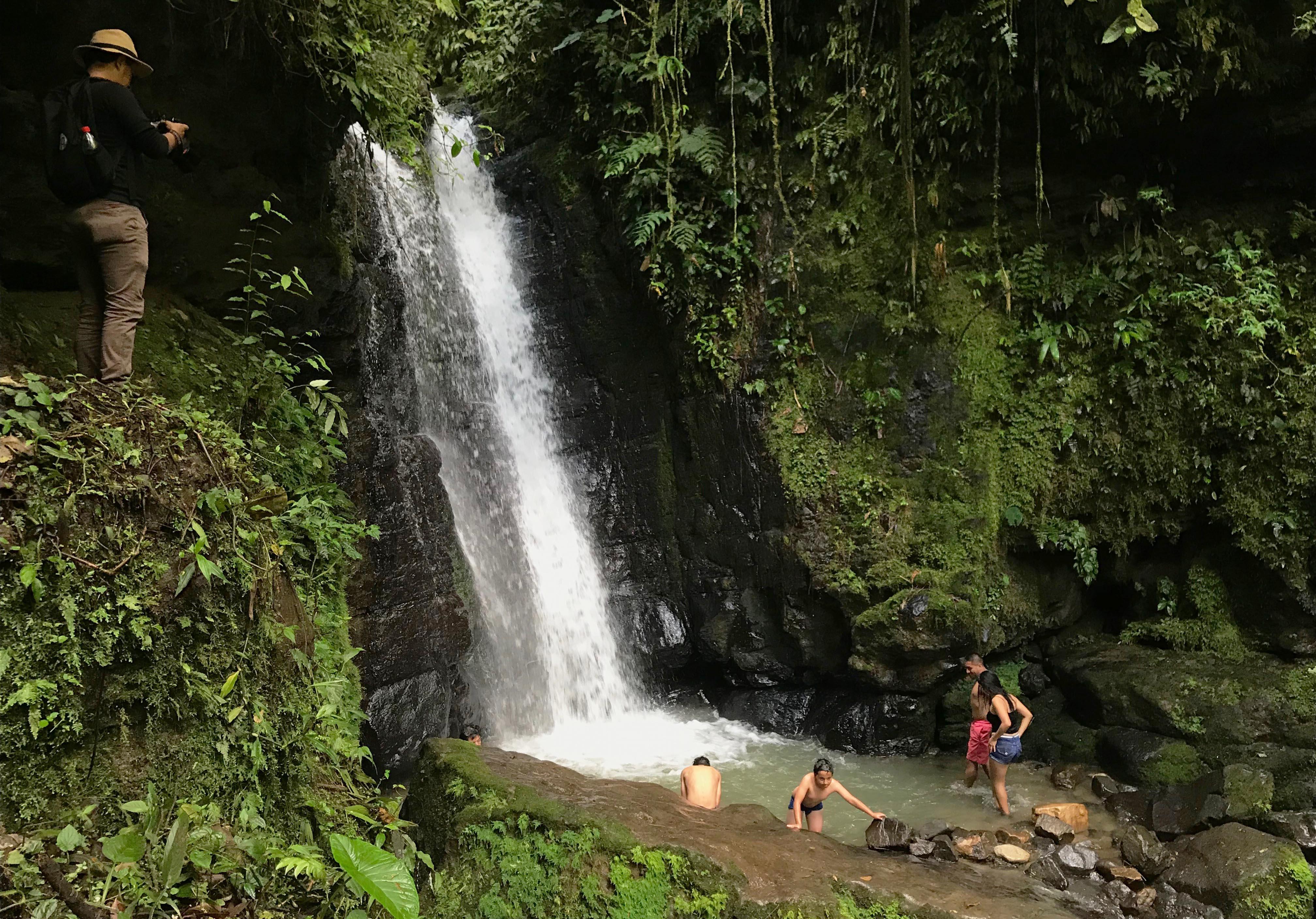 Ruta Los Guayacanes