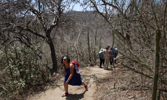 Caminata Los Frailes